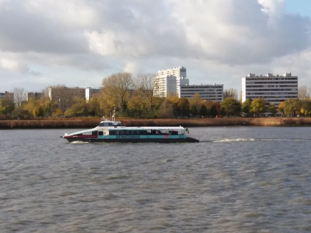 Waterbus te Antwerpen Aqua Ruby foto T B